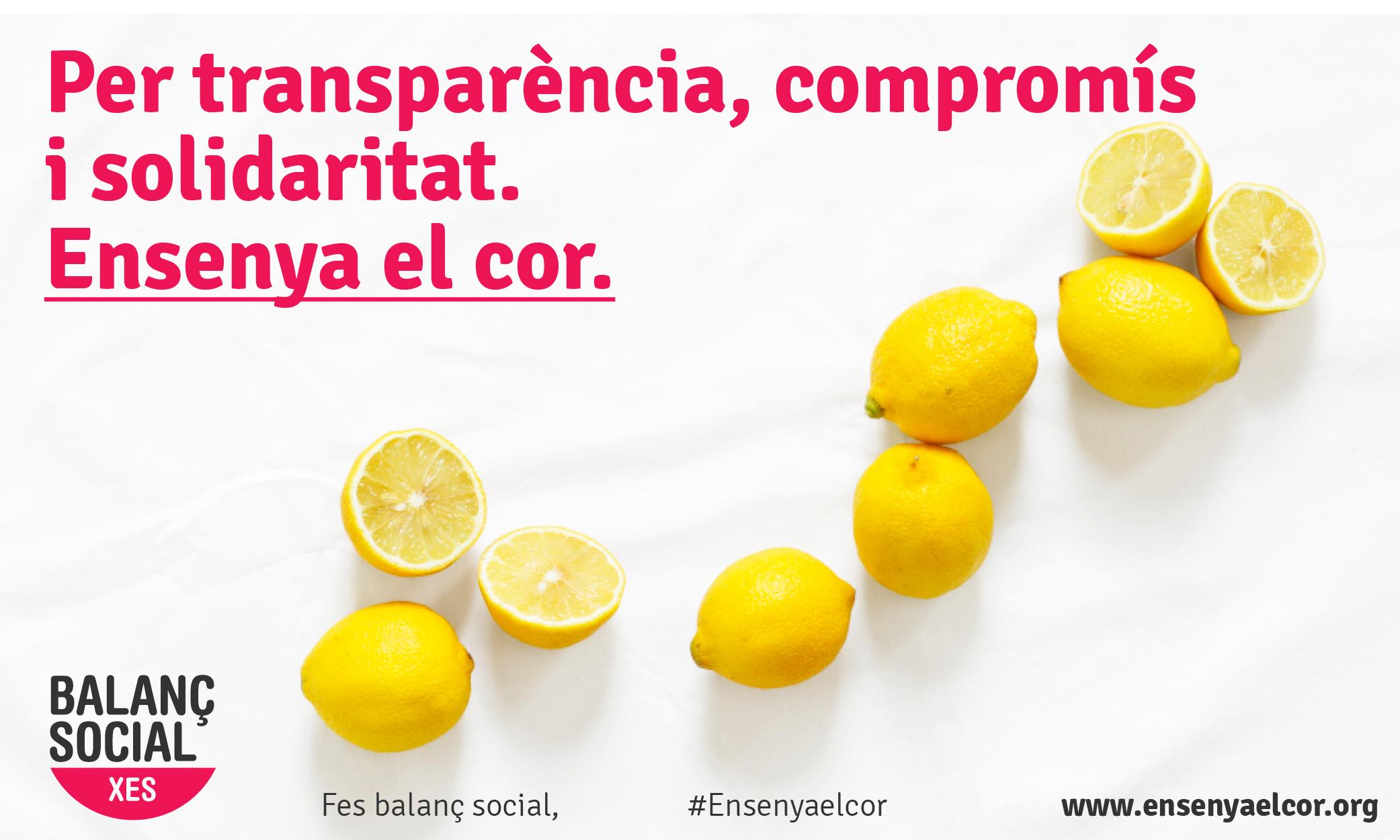 Comença la campanya de Balanç Social 2019!